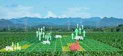[보도] 실측조사 도입으로 농업관측의 새 지평 확장