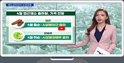 [영농길라잡이 농업관측] 엽근채소, 양념채소 4월 관측