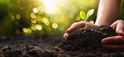[보도] 농지의 환경서비스 제고를 위해 휴경농지 관리와 영농방법 전환 필요