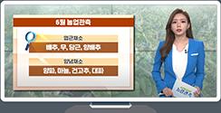 [영농길라잡이 농업관측] 엽근채소, 양념채소 6월 관측