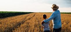 [보도] 고령농 경영이양 위한 노후소득 지원과 승계자 확보 방안 필요