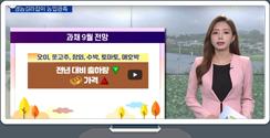 [영농길라잡이 농업관측] 과일, 과채 9월 관측