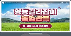[영농길라잡이 농업관측] 쌀, 육계 11월 관측